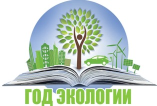 logo eco year